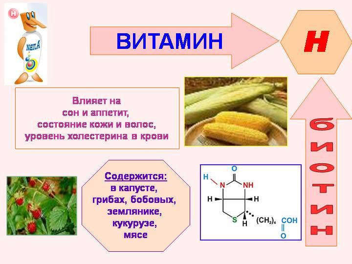 Состав витаминов Биотин. Где содержится Биотин?