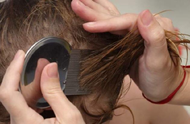 Чемеричную воду можно применять и для роста волос