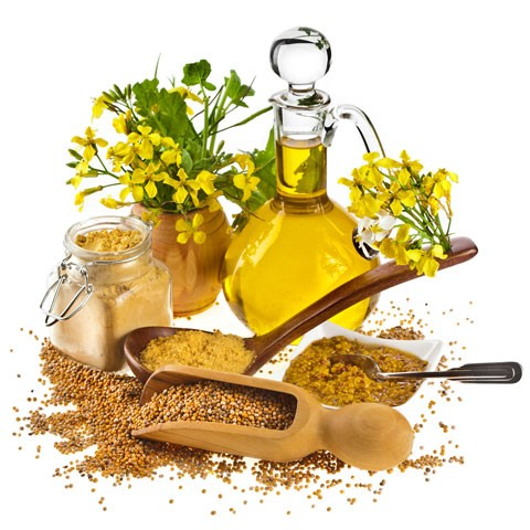 Горчичное масло - отличное укрепляющее средство