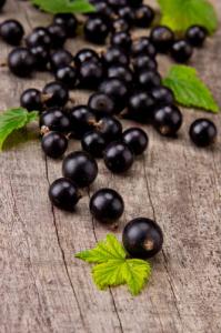 В ягодах содержаться антиоксиданты, защищающие ткани организма от активности свободных радикалов